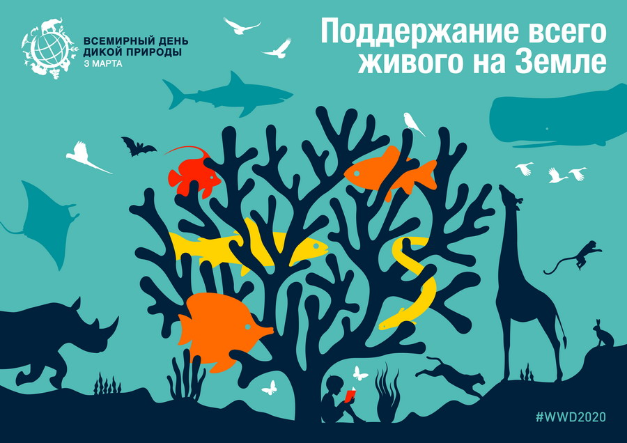 It's Time to Take Action: Save the World's Wildlife! Book Exhibition