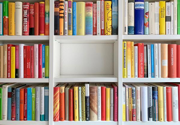 The Art of Sorting: How to Organize your Bookshelves and Stay Sane